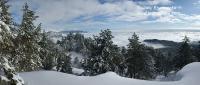 Зимняя сказка на горе Ай-Петри